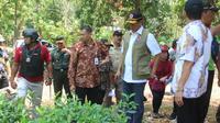 Kepala BNPB Doni Monardo meninjau sentra pembibitan Perhutani, Pati, yang akan ditanam di Pegunungan Kendeng. (Liputan6.com/Ahmad Adirin)