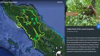 Kawasan Ekosistem Leuser di Google Earth (Foto: Google Earth)