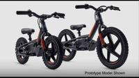 Sepeda listrik kolaborasi Harley-Davidson dengan StaCyc (ist)