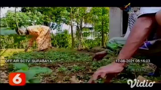 Sudirno (79) warga Dusun Ketro, Desa Petungsinarang, Kecamatan Bandar, Pacitan, Jawa Timur, merupakan salah satu tokoh perancang gambar uang kertas rupiah. Sudirno membuat desain uang kertas Rp 1000 di tahun 1980, dan uang kertas Rp 10000 di tahun 19...