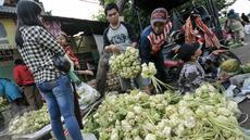Warga membeli kulit ketupat untuk bahan membuat ketupat yang menjadi makanan khas di Hari Raya Idul Fitri, Jakarta, Senin (4/7). Jelang Hari Raya Idul Fitri, pedagang kulit ketupat mulai kebajiran pembeli. (Liputan6.com/Yoppy Renato)