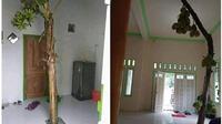 6 Potret Tanaman Tumbuh di Tempat Tak Biasa Ini Nyeleneh Banget (sumber: Instagram.com/sukijan.id)