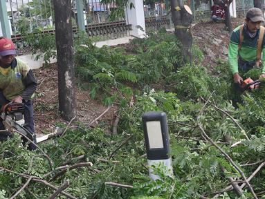 Petugas memangkas dahan pohon yang rimbun di sepanjang Jalan Lenteng Agung Raya, Jakarta Selatan, Rabu (2/1). Pemangkasan dilakukan guna mencegah pohon tumbang akibat musim hujan dan angin kencang. (Liputan6.com/Immanuel Antonius)