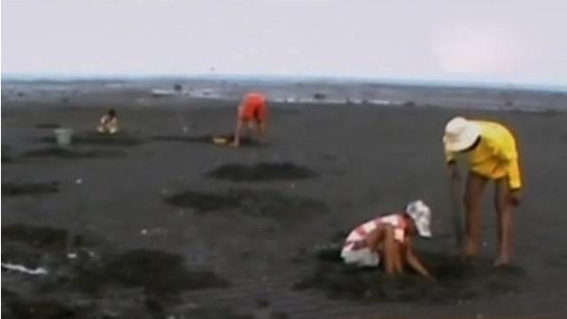 ibu kandung yang menganiaya anaknya hingga tewas di Sukabumi, hingga berburu kerang di saat air laut surut