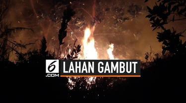 Sudah satu pekan ini kobaran api yang membakar lahan gambut di Jalan Hiu Putih, Palangka Raya, Kalimantan Tengah belum bisa dipadamkan secara tuntas.