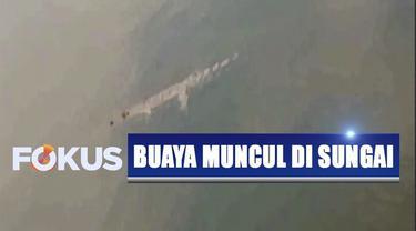 Buaya berukuran lebih dari dua meter tersebut membuat warga penasaran. Setiap hari warga mendatangi Sungai Bengawan Solo untuk melihat buaya.