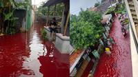 Potret Banjir Pekalongan Berwarna Merah (Sumber: