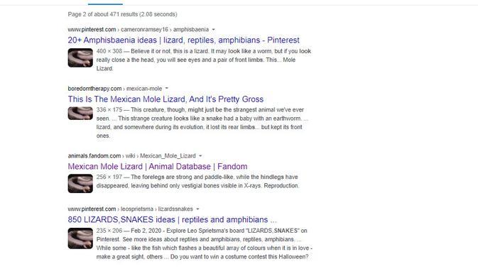 Cek Fakta Liputan6.com menelusuri informasi binatang tanda kiamat Dabbah muncul di Israel