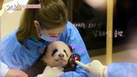 Blackpink bersama Fubao si bayi panda. (Tangkapan layar YouTube/ Blackpink)