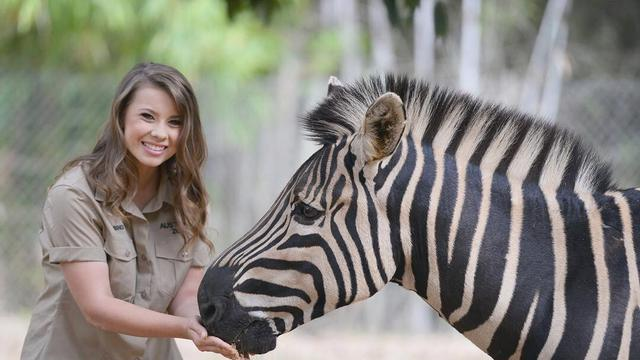 Putri Steve Irwin Unggah Video Berbahaya Dengan Buaya Showbiz Liputan6 Com