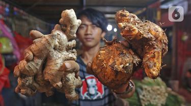 Pedagang menunjukkan jahe dan temulawak dagangannya di Pasar Induk Kramat Jati, Jakarta, Kamis (5/3/2020). Heboh virus corona Covid-19 mulai berdampak pada harga rampah-rempah seperti jahe merah dan Temulawak yang dipercaya dapat meningkatkan imun atau kekebalan tubuh. (Liputan6.com/Herman Zakharia)
