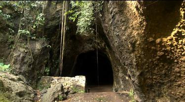 Mendengar nama gua Naga Raja tak lepas dari kesan mistis dan angker. Gua yang terletak di Kabupaten Cilacap, Jawa Tengah dipercaya sangat ampuh untuk mengharap berkah. Beberapa makhluk gaib yang menjaga gua Naga Raja konon sering menampakkan diri.