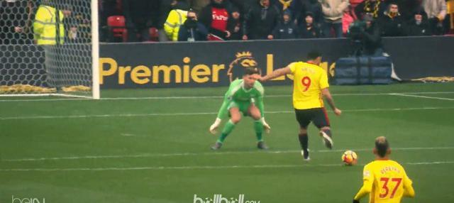 Striker Watford, Troy Deeney mencetak sejarah bagi Watford di Premier League.