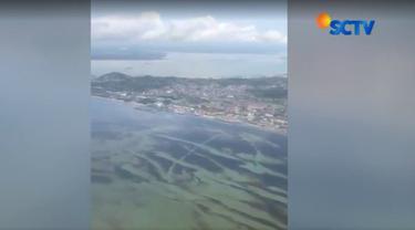 Berdasarkan pantauan, minyak yang tumpah di Teluk Balikpapan meluas hingga ke Selat Makassar
