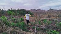 Seorang petani di Bukit Rinting, Desa Lubuk Mandarsah, Tebo, Jambi, menunjukan lahannya yang dirusak oleh perusahaan. Kelompok tani di desa tersebut sampai saat belum mendapat kepastian. (Liputan6.com/Gresi Plasmanto)