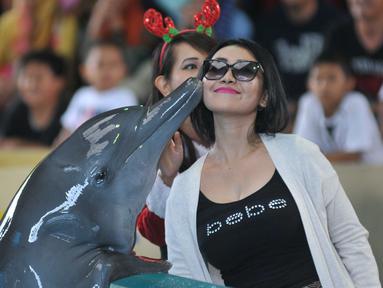 Lumba-lumba mencium seorang wanita saat atraksi Dolphin Christmas Show di Ocean Dream Samudera Ancol, Jakarta, Jumat (25/15). Pertunjukkan tersebut diadakan dalam rangka menyambut libur natal. (Liputan6.com/Gempur M Surya)