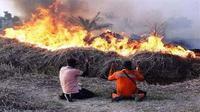 Pada 10 Agustus 2019 pagi, seluruh personil sejumlah 9.072 orang di 6 provinsi (Riau, Jambi, Sumatera Selatan, Kalimantar Barat, Kalimantan Tengah dan Kalimantan Selatan)  da masyarakat berupaya memadamkan api kebakaran hutan. (Dok Badan Nasional Penanggulangan Bencana/BNPB)