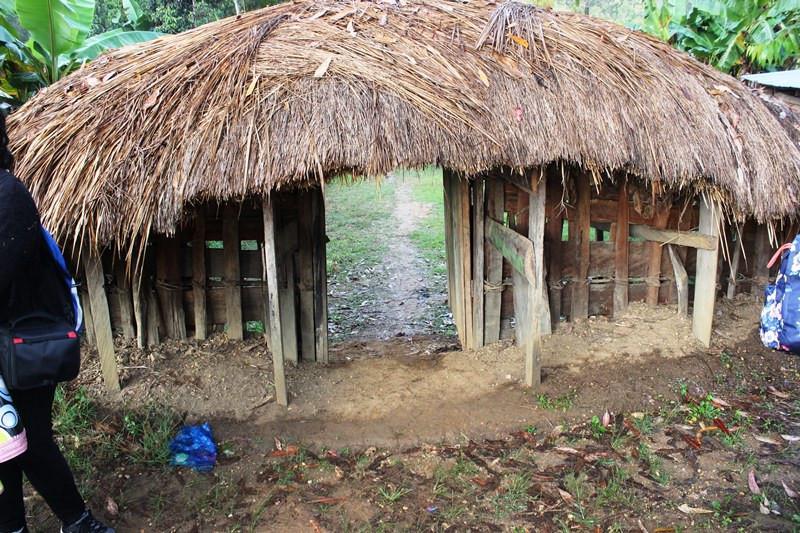 Pintu gerbang masuk ke honai perempuan.  (Foto: Liputan6.com/Fitri Haryanti Harsono)