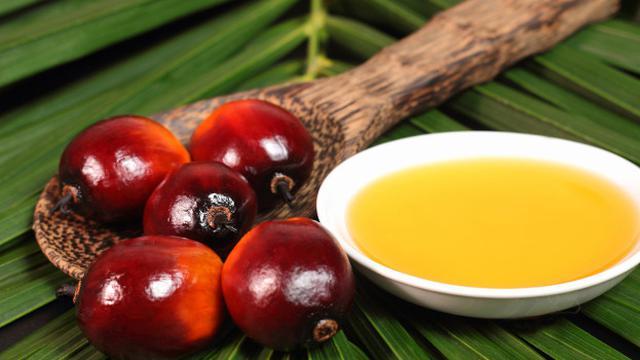 Manfaat Sehat Minyak Kelapa Sawit, Bisa untuk Cegah Kanker