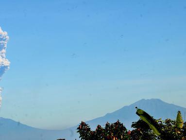 Gunung Merapi memuntahkan abu terlihat dari Karanganyar di provinsi Jawa Tengah (1/6). Serangkaian letusan Gunung Merapi pada akhir 2010 menewaskan lebih dari 350 orang dan membuat lebih dari 250.000 penduduk desa mengungsi. (AFP Photo/Anwar Mustafa)