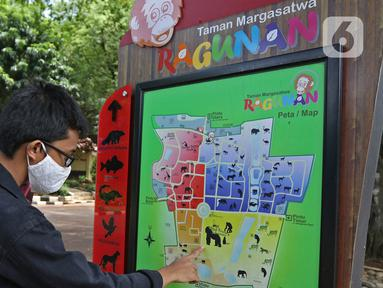 Pengunjung melihat denah Taman Margasatwa Ragunan (TMR), Jakarta Selatan, Sabtu (26/12/2020). Meskipun pandemi covid-19 masih terjadi, sejumlah warga tetap mengunjungi Ragunan di libur panjang Natal 2020 ini. (Liputan6.com/Herman Zakharia)