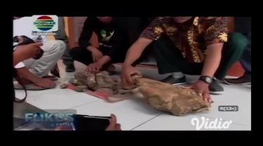 Balai Pelestarian Cagar Budaya (BPCB) Jatim akan melakukan ekskavasi di lokasi penemuan fosil hewan purba, Madiun. Ekskavasi akan dilakukan bersama Balai Pelestarian Situs Manusia Purba (BPSMP) Sangiran, Sragen, Jawa Tengah.