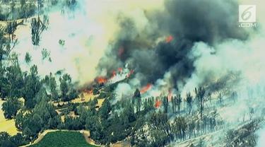 Kebakaran hutan melanda Lake Country, California Utara. Ribuan warga berhasil harus mengungsi dan dievakuasi.