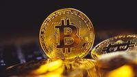 Ilustrasi Bitcoin (Ist)