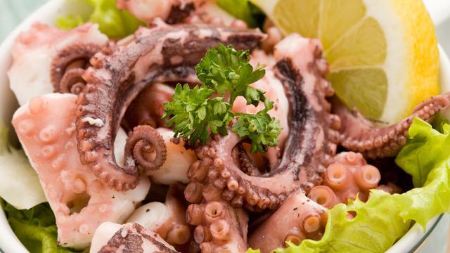 makanan gurita