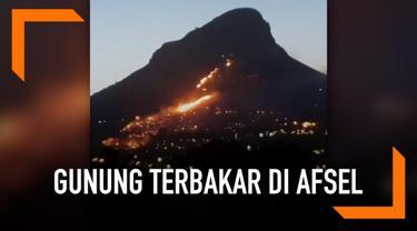 Gunung Lion's Head di Afrika Selatan terbakar. Berbagai usaha dilakukan untuk memadamkan api.