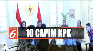 Moeldoko juga menyatakan sepuluh nama itu sudah diserahkan presiden ke DPR sesuai dengan prosedur.
