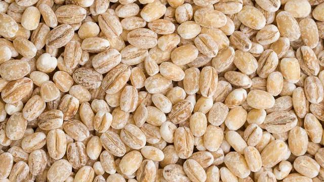 [Bintang] Barley