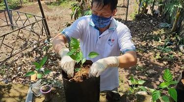 Lumentut menanam sejumlah tanaman di pekarangan rumahnya.
