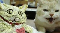 Potret lucu kue mirip hewan ini justru tak sesuai harapan. (Sumber: Facebook/Ikatan Kucing Indonesia (IKI))
