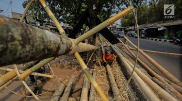 Pedagang membersihkan batang pinang yang akan dijual di kawasan Manggarai, Jakarta, Selasa (6/8/2019). Menjelang HUT RI ke-74 , penjual batang pinang musiman memasarkan dagangannya yang biasa digunakan untuk perlombaan panjat pinang. (Liputan6.com/Faizal Fanani)