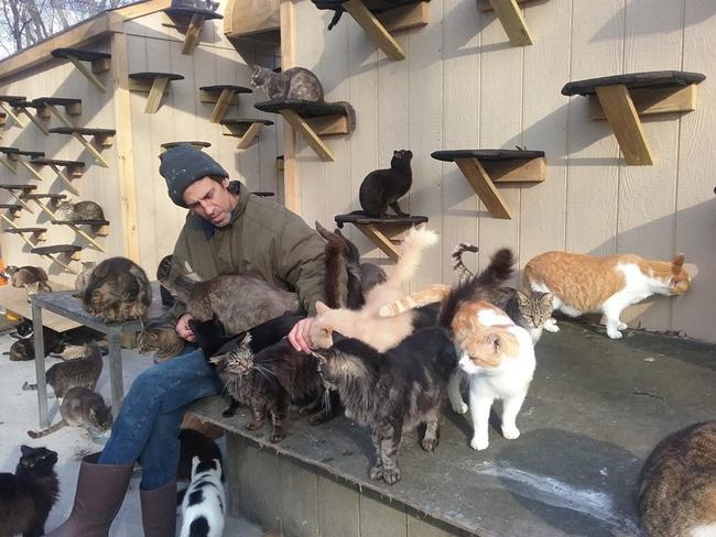 Chris begitu tulus dalam merawat ratusan kucing di rumahnya/copyright YouTube.com/Happy Cat Sanctuary