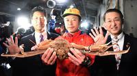 Kepiting salju terjual 46 ribu dolar AS di lelang, di kota Tottori, Jepang. (STR / JIJI PRESS / AFP)