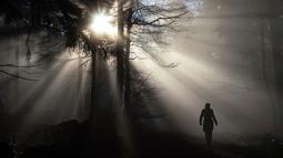 Seseorang berjalan di hutan dekat kota Königstein saat pagi hari di Jerman tengah, (28/12). (AP Photo / Frank Rumpenhorst)
