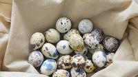 Telur Puyuh vs Telur Ayam, Mana yang Kolesterolnya Lebih Tinggi?
