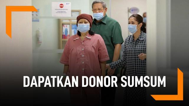 Ani Yudhoyono akan dapatkan donor sumsum tulang belakang. Adik kandung Ani, Pramono Edhie Wibowo adalah pendonornya.