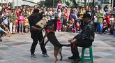 Detasemen pelacak kriminal umum dari unit K-9 Mabes Polri melakukan simulasi proteksi di tengah kegiatan car free day di kawasan Bundaran HI, Jakarta, Minggu (26/1/2020). Acara tersebut digelar untuk mensosialisasikan tugas unit K9 kepada masyarakat. (Liputan6.com/Johan Tallo)