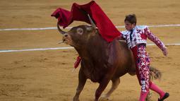 """Matador Spanyol, Julian """"El Juli"""" Lopez melakukan operan dengan muleta saat  adu banteng Picassiana di arena adu banteng Malagueta di Malaga, Spanyol (19/8/2019). (AFP Photo/Jorge Guerrero)"""