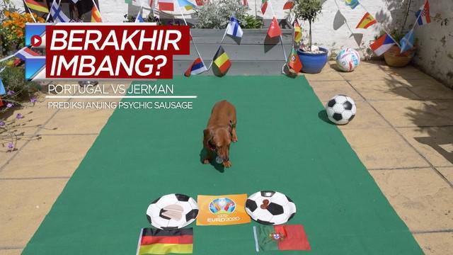 """Berita video prediksi dari anjing yang dijuluki """"Psychic Sausage"""" untuk laga Grup F Euro 2020 antara Timnas Portugal melawan Timnas Jerman. Apakah akan berakhir imbang?"""
