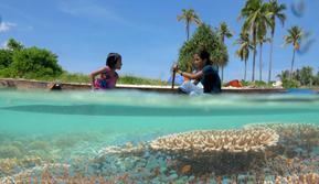 Savana yang menjadi salah satu pesona pulau ular Buton Selatan.(Liputan6.com/La Dicky Milar Untuk Ahmad Akbar Fua)