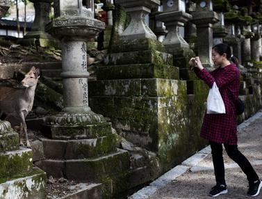 Taman Nara, Jepang