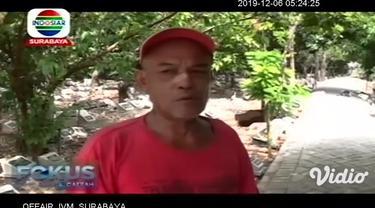 Khawatir menyerang warga, sarang lebah vespa affinis, atau tawon ndas yang berada di tempat pemakaman umum di kawasan Jalan Karangrejo, Wonokromo, Surabaya, Rabu siang dibakar oleh petugas Pemadam Kebakaran.