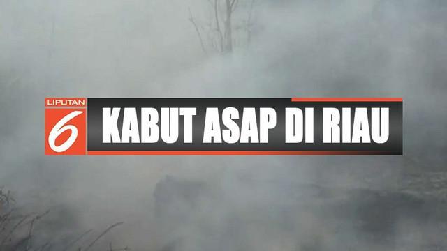 Berdasarkan data Polda Riau, kebakaran lahan mencapai lebih dari 200 hektare.