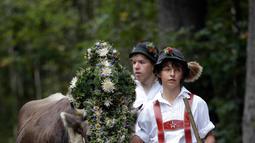 Penggembala Bavaria menggiring hewan ternaknya di pegunungan dekat Oberstdorf, Jerman, Kamis (13/9). Memasuki musim gugur, penggembala Bavaria akan memindahkan hewan ternak mereka untuk mendapatkan rumput di lembah. (AP Photo/Matthias Schrader)