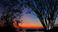 Paradise Bar and Cafe menjadi salah satu tempat yang tepat bagi wisatawan yang ingin menyaksikan sihir keindahan pemandangan matahari terbenam Labuan Bajo. (Liputan6.com/ Ahmad Ibo)