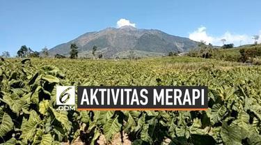 Gunung Merapi kembali luncurkan awan panas sejauh 1000 meter. Guguran awan panas terlihat dari kawasan Selo Boyolali Jawa Tengah. Hingga saat ini status Merapi masih waspada, dengan radiun aman sejaun 3 kilometer.